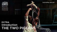 The Two Pigeons: Introduction
